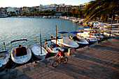 Man Cycling In Alcudia's Port At Sunset, Mallorca, Balearic Islands, Spain