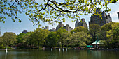 'Miniature sailboats in a lake in a park; New York City, New York, United States of America'