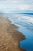 'Sandy beach along the Pacific coast; Oregon, United States of America'