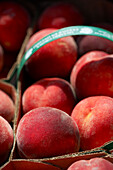 Fresh Peaches In Baskets, Riverdale Farmer's Market, Toronto, Ontario