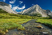 Upper Elbow River And Tombstone Mountain, Big Elbow Trail, Kananaskis Country, Alberta