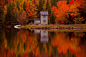 Fall Trees, Four Lakes, Near Saint Jovite, Quebec