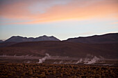 El Tatio Geysers At Dawn, Antofagasta Region, Chile