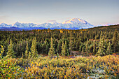 Early morning shot of the north face of Mt. McKinley Denali from Wonder Lake with alpine glow on the upper mountain in Denali National Park, interior Alaska. Fall. HDR