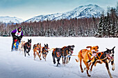 Rondy World Championship Sled Dog Race runs through Campbell Airstrip with the Chugach Mountains in the background, Anchorage, Southcentral Alaska, Winter.