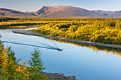 a small boat motors down the Kobuk river on a calm sunny day, Arctic Alaska, summer
