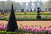 the spring tulips and vauban aqueduct, french-style gardens created in 2013 following the original plans by andre le notre commissioned by louis xiv for francoise d'aubigne, chateau de maintenon, eure-et-loir (28), france