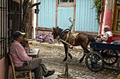 cafe bar palabahce kahvehanesi and horse-drawn cart, 13 nissan street, city of ayvalik on the shores of the aegean sea, the olive riviera, north of izmir, turkey