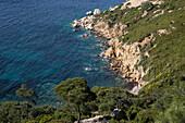 ragged coastline, turkish coast of the aegean sea, region of foca, the olive riviera, north of izmir, turkey