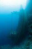 Upright Tuna Boat Wreck, Marovo Lagoon, Solomon Islands