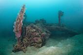 Radial Engine of Dauntless Dive Bomber Wreck, Marovo Lagoon, Solomon Islands