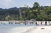 Elephant Beach, Indian tourists at the most crowded beach on the island, shallow water, many non-swimmers, coastal forest without palms, northwest coast, Havelock Island, Andaman Islands, Union Territory, India