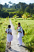 Schoolgirls on the way home, path near Village No. 7, rice fields, Havelock Island, Andaman Islands, Union Territory, India