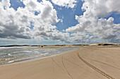 Ride on buggies, tracks on the beach in Jericoacoara National Park, near Jericoacoara, Ceara, Brazil