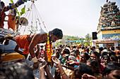 Believer hanging on hooks, Sri Vinayagar temple festival, annual Hindu festival in the village of Nadukahni, northwest of the Nilgiri Hills (Ooty), Western Ghats, Tamil Nadu, India