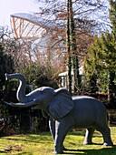 France, Paris,Louis Vuitton Foundation in the Bois de Boulogne from the jardin d'acclimatation (architect : Frank Gehry)