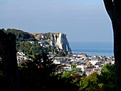 France,view of Etretat trough the vegetation