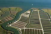 France, South Western France, Charente-Maritime , Chenal d'Orivol, La Seudre, aerial view