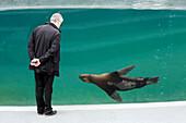 France,Paris, Vincennes, Zoo de Vincennes, Patagonia area, Visitor watching with interest a sea lion