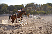 Teenage girl riding horse over jumps on course