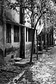 Outside of a school building, Munshiganji, Bangladesh