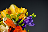 colorful spring bouquet with dark background, Hamburg, Germany