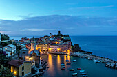 Aerial view of Vernazza cityscape and ocean, La Spezia, Italy