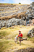 Hispanic girl walking llama in rural landscape