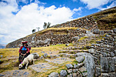 Older Hispanic woman walking llama on stone steps