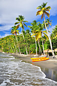 palm trees and boats on Anse Mamin beach, Anse Chastanet, sea, Soufriere, St. Lucia, Saint Lucia, Lesser Antilles, West Indies, Windward Islands, Antilles, Caribbean, Central America
