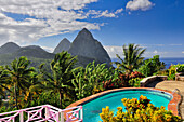 swimming pool of La Haut Plantation hotel with view to palm trees and volcano mountains The Pitons with Gros and Petit Piton, UNESCO world heritage, Soufriere, St. Lucia, Saint Lucia, Lesser Antilles, West Indies, Windward Islands, Antilles, Caribbean, Ce