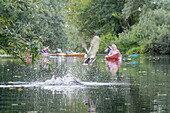 Kayak tourists paddling through the Spreewald biosphere reserve. Photograph taken at water level. Flying duck whirling up water and breaking the surface. Drops of water splashing, biosphere reserve, Schlepzig, Brandenburg, Germany