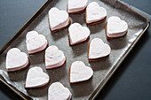 Pink Heart-Shaped S'mores Marshmallows on Graham Cracker Cookies
