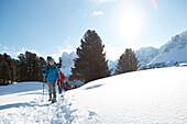 Group of people snow shoeing, Kreuzwiesenalm, Luesen, South Tyrol, Italy