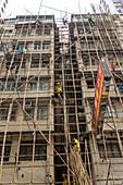 Arbeiter klettern im Bambusgerüst, Abbau, Akrobaten, ohne Sicherung, Arbeitssicherheit, Gerüst, Monteure, Rückbau des Baugerüsts, Fassade, Baustelle, Wohnhaus, Hong Kong, Wanchai, Hongkong, China, Asien
