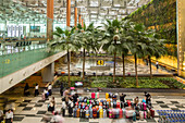 Singapore airport, Changi, lugagge, many cases, passengers, baggage claim, transit, commuters, travellers, modern, hall, terminal, green atmosphere, palm trees, conveyor belt, Singapore, Asia