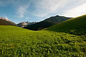 Spring in the Axamer Lizum, View to Kalkkoegel, Stubai Alps, Tyrol, Austria