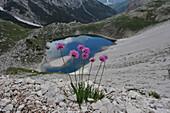 Mountain lake on the Boeden Alps, Sexten Dolomites, South Tyrol, Italy