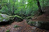 Ysper Canyon, Yspertal, Melk, Lower Austria, Austria