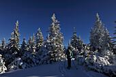 Snowshoeing on Gleinser Mountain, Stubai Alps, Tyrol, Austria
