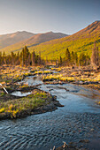 Scenic view of a stream in Eagle River Valley, Chugach State Park, Southcentral Alaska