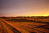 Glow over farmland at sunset, Manitoba, Canada