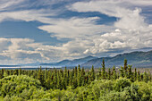 Scenic view of Kluane Lake and a boreal forest in the foreground, Yukon Territory, Canada, Summer
