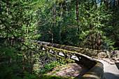 View of the bridge over Whatcom Falls, Bellingham, Washington, Summer