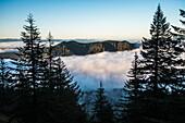 Fog fills the valleys below at dawn on Saddle Mountain, Hamlet, Oregon, United States of America