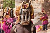 Dancers wearing Kananga mask at the Dama celebration in Tireli, Mali