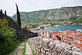 The Old Town, As Seen From San Giovanni Fortress, Kotor, Montenegro