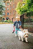 Mixed race boy walking dog on city sidewalk
