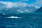 Stuermische See vor Bergkulisse, Jason Harbour, Suedgeorgien, Antarktis