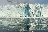 Riesiger Gletscher mit 30-40 Meter hoher Kante spiegelt sich in ruhigem Wasser, Paradise Bay Paradise Harbor, Danco-Kueste, Grahamland, Antarktis